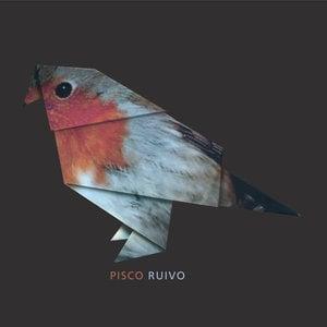 Profile picture for Pisco Ruivo