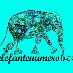 Profile picture for elefante numero 6