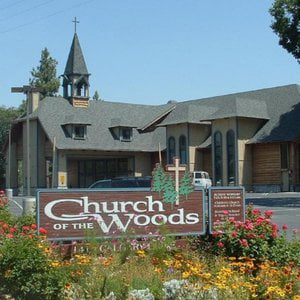 Profile picture for Church of the Woods