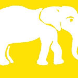 Profile picture for elephun videos
