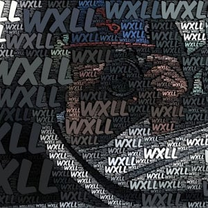 Profile picture for WxLL