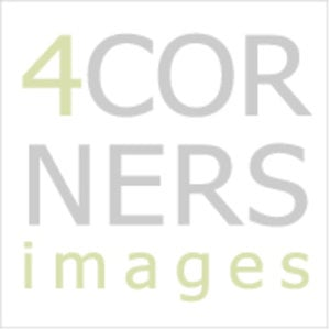 Profile picture for 4Corners Images