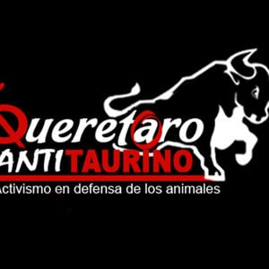 Profile picture for Queretaro Antitaurino TV