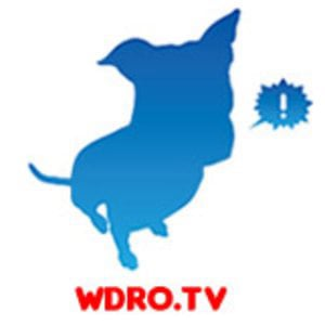 Profile picture for WDROTV