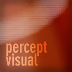Profile picture for percept visual | Brian Ziffer