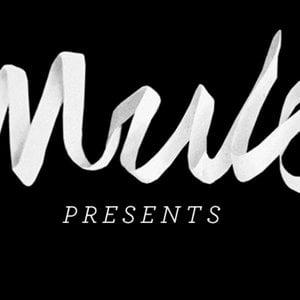 Profile picture for Mule Magazine