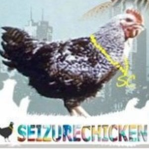 Profile picture for SeizureChicken