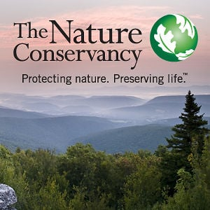 Profile picture for The Nature Conservancy