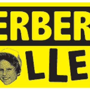 Profile picture for herbert holler