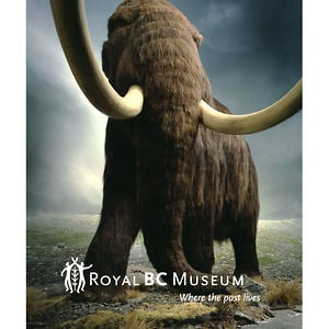 Profile picture for Royal BC Museum