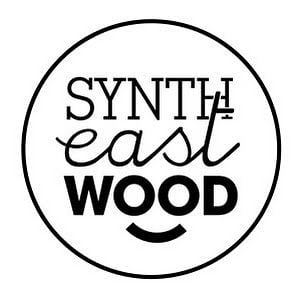 Profile picture for Synth Eastwood