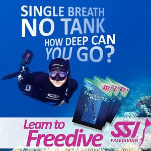 Profile picture for SSI FREEDIVING