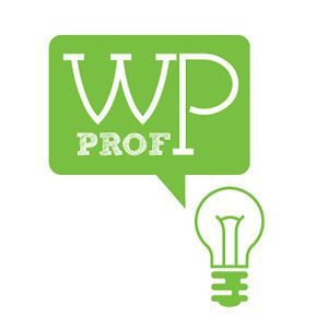 Profile picture for WP-Prof