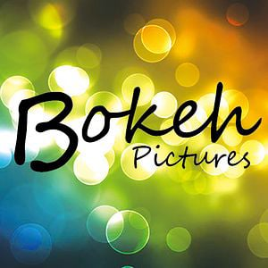 Profile picture for Bokeh Pictures