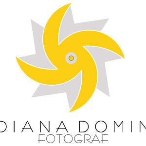Profile picture for Diana Domin Group