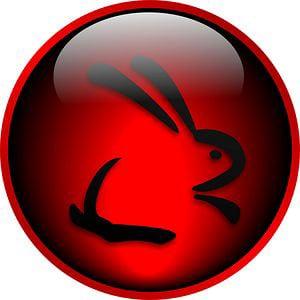Profile picture for Conejo Negro 2k