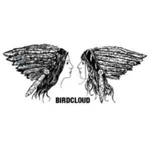 Profile picture for Birdcloud