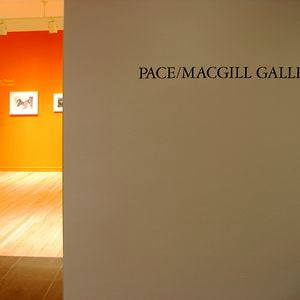 Profile picture for Pace/MacGill Gallery