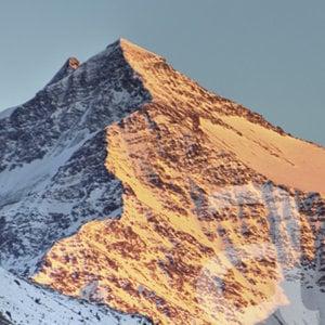 Profile picture for Alpinia, Bormio