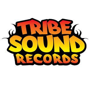 Profile picture for TribeSound Records