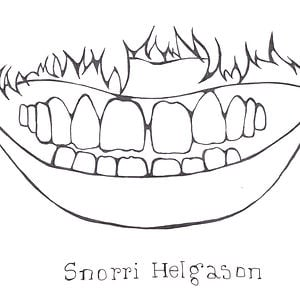 Profile picture for Snorri Helgason