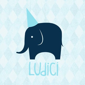 Profile picture for Ludici