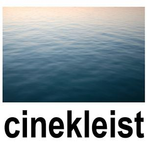 Profile picture for cinekleist