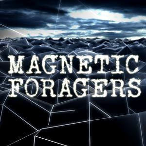 Profile picture for Magnetic Foragers