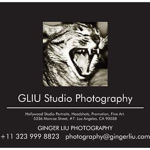 Profile picture for Ginger Liu