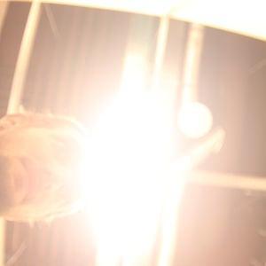 Profile picture for jhj