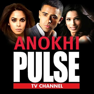 Profile picture for ANOKHI Pulse TV