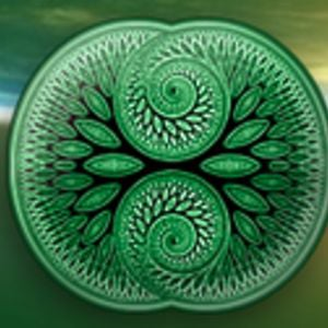 Profile picture for Living Mandala