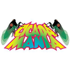 Profile picture for Cicada Mania