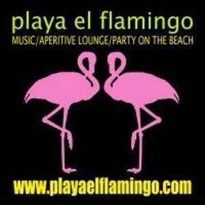 Profile picture for Playa El Flamingo