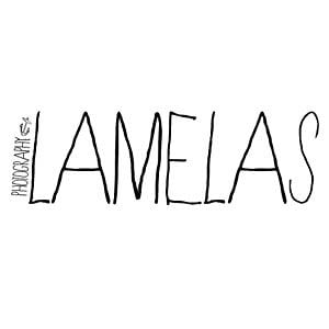 Profile picture for Tiago Lamelas