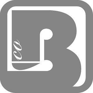 Profile picture for BoardCo.com