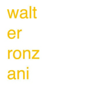 Profile picture for Walter Ronzani