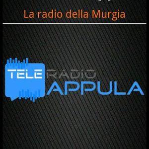 Profile picture for TELE RADIO APPULA