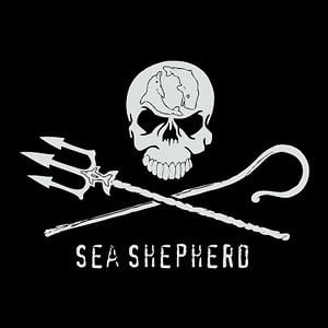 Profile picture for Sea Shepherd Deutschland