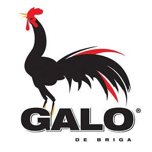 Profile picture for Galo de Briga Filmes