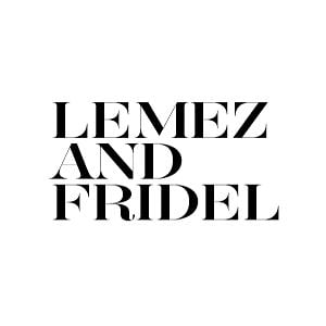 Profile picture for Lemez and Fridel TV