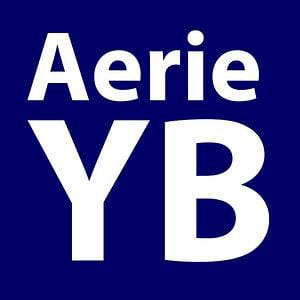 Profile picture for Aerie Yearbook
