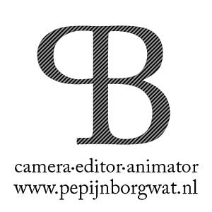 Profile picture for pepijn borgwat