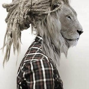 Profile picture for Vini Bock