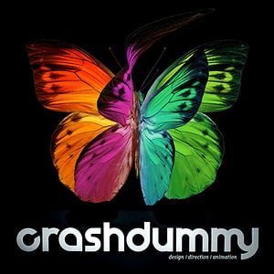 Profile picture for crashdummy.net
