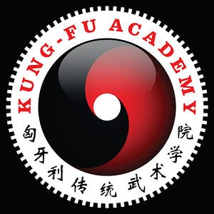 Profile picture for Kung Fu Akadémia