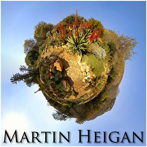 Profile picture for Martin Heigan
