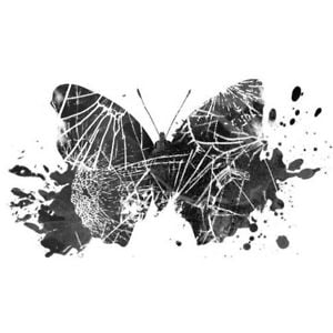 Profile picture for Butterfly Crash