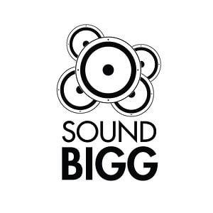Profile picture for soundbigg