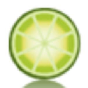 Profile picture for Limeade Marketing
